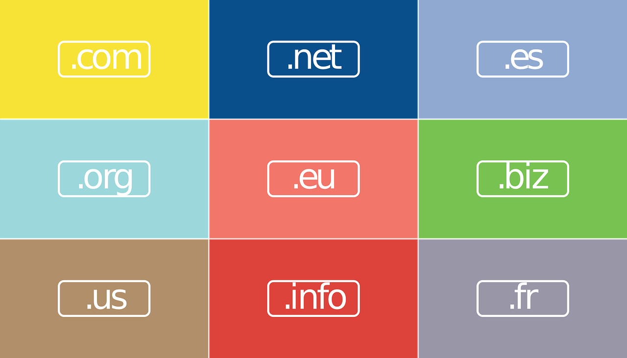 What is in domain name
